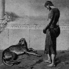 argosdog