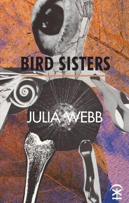 f40eb5af6c-Bird Sisters cover.jpg